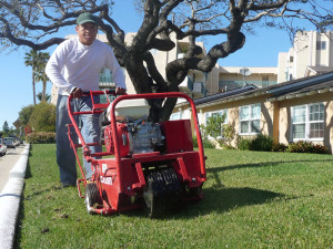 garden-maintenace-aeration